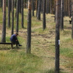 A man in the woods at Zlatibor.